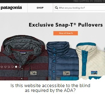 Patagonia Website Image - Is this website accessible?